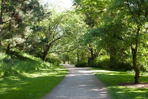 Arboretum-Path